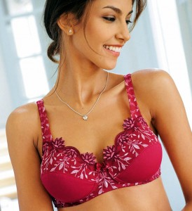 Red Bra with Embroidered Red and White Flowers.
