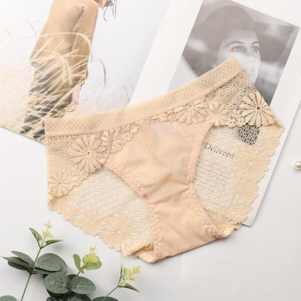 Woman Lace Panties Sexy Hollow Lace Transparent Briefs Middle Waist Lingerie Underwear Soft Breathable For 85-130 Sexy Beauty