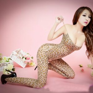 Leopard Body Stocking Sexy Suspender Bodysuits Lingerie Nets Clothing Sex Costumes Mesh Fishnet Open Crotch Bodystocking